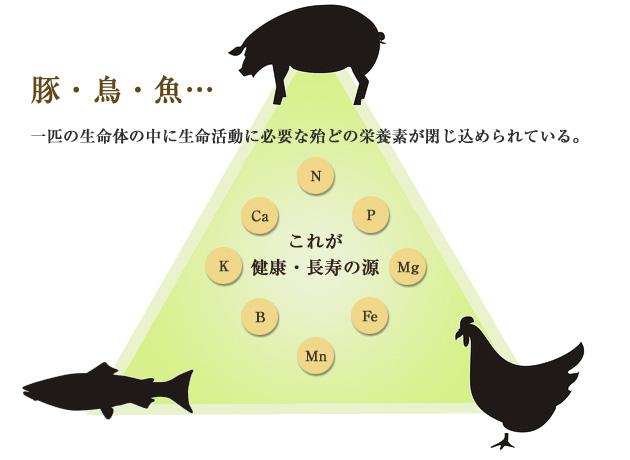土の食養生に適した肥料のヒントイメージ
